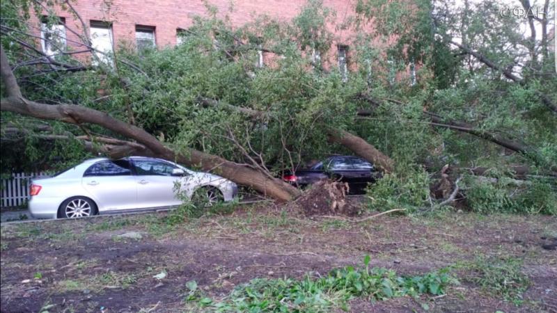 Тайфун «Майсак» стал причиной введения ЧС в Приморье