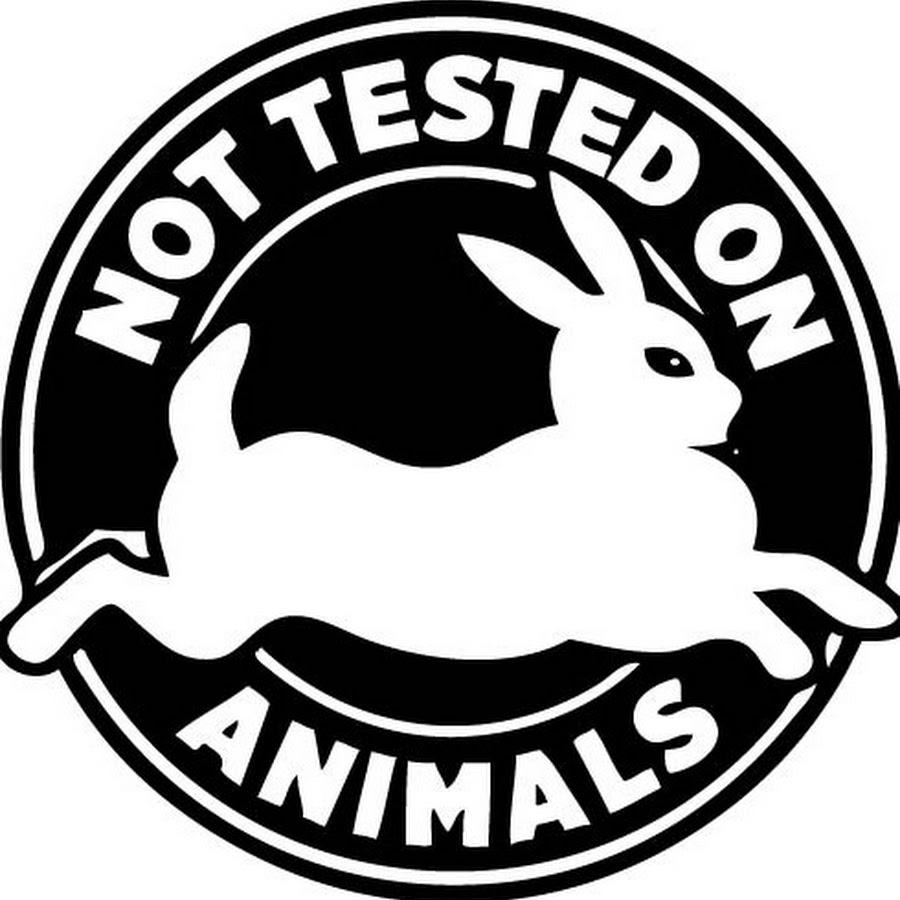 Создан первый препарат без тестов на животных