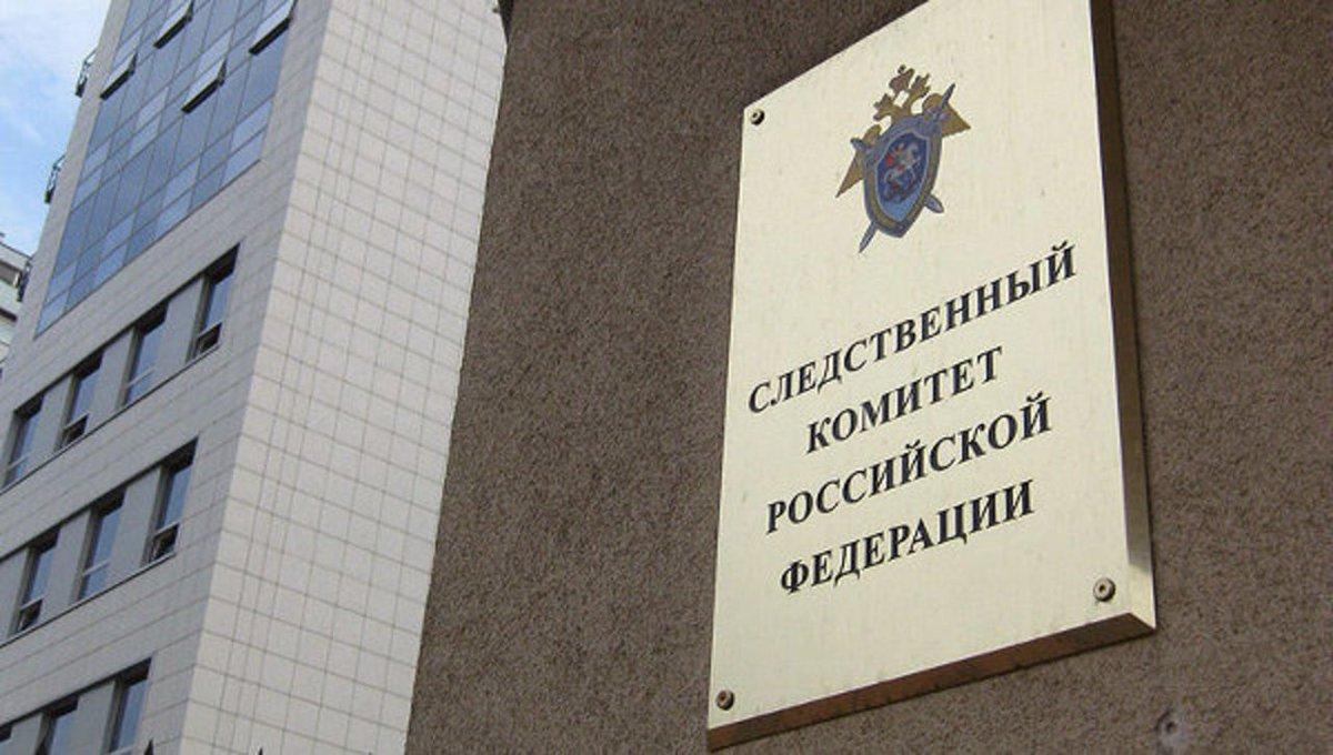 ЦИК направит в СК материалы о нарушениях на выборах в Госдуму по округу №216 в Петербурге